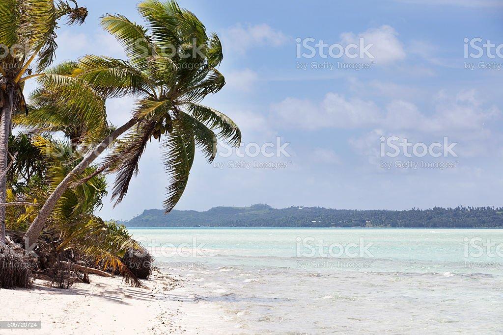 gorgeous tropical island stock photo