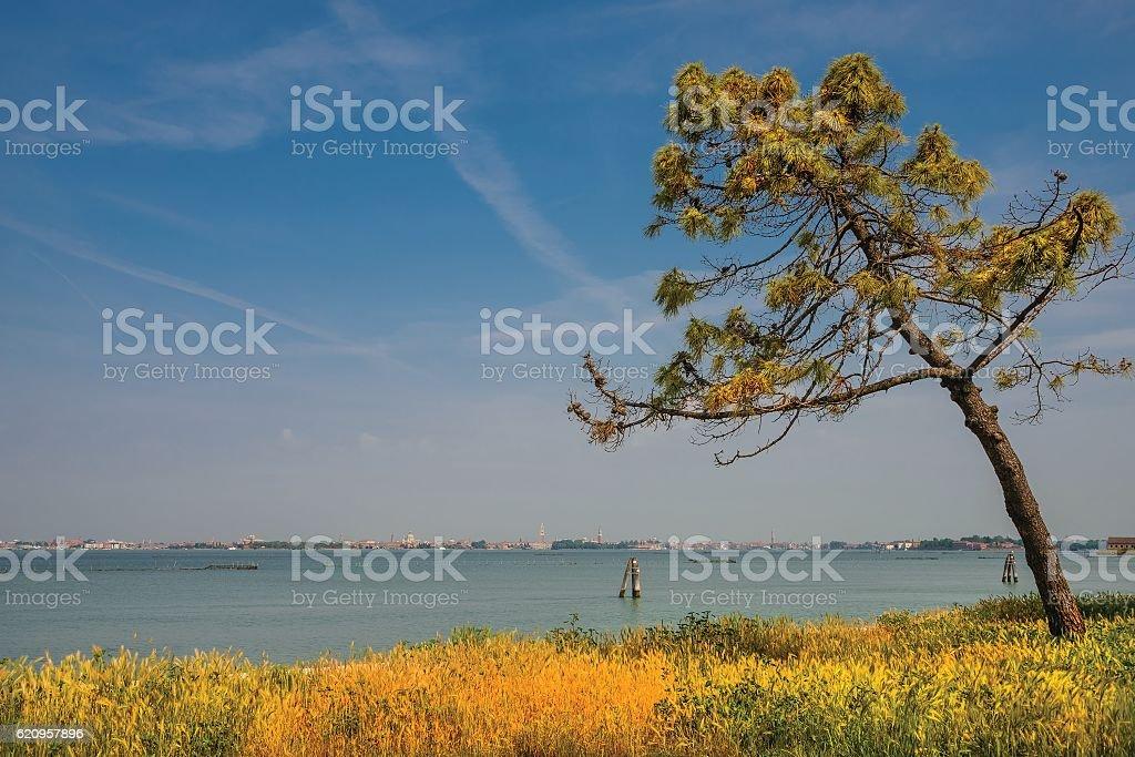 Gorgeous venetian landscape at Lido beach, Venice, Italy stock photo