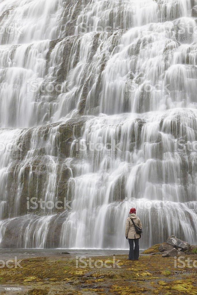 Gorgeous Waterfall royalty-free stock photo