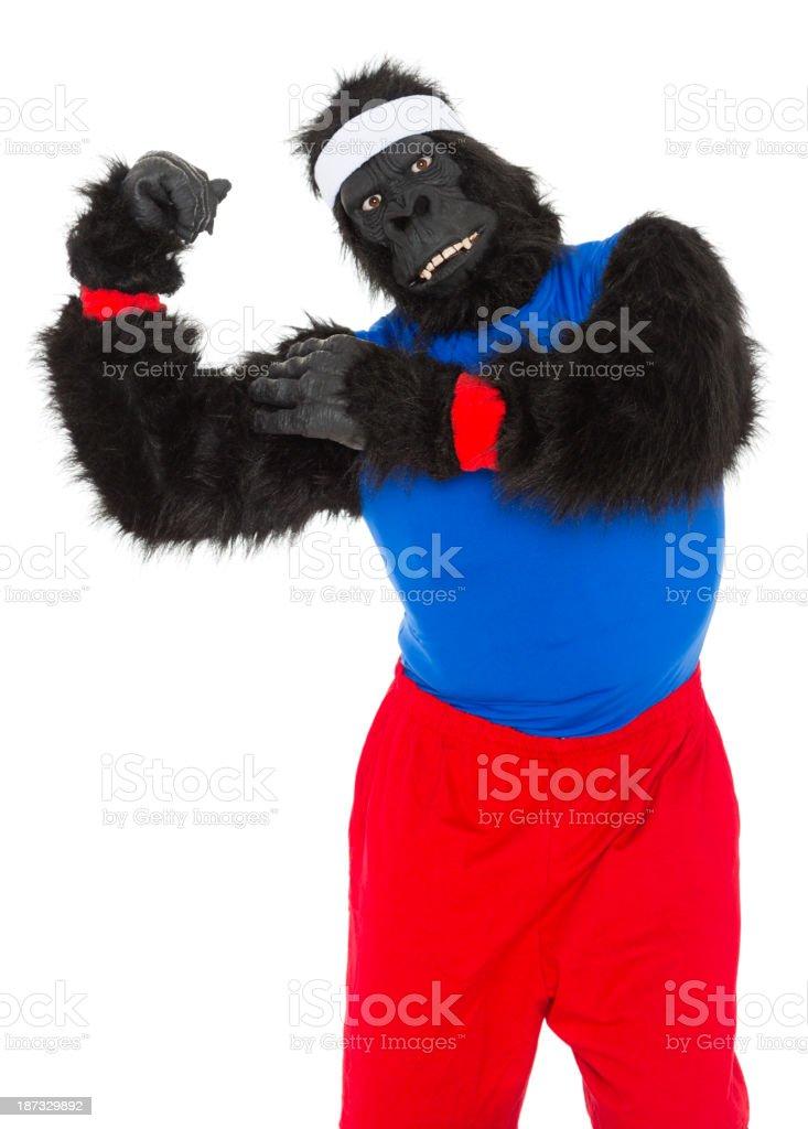 Gorilla Athlete royalty-free stock photo