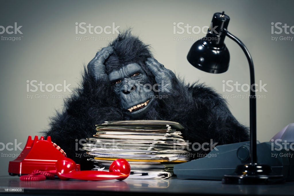 Gorilla Businessman royalty-free stock photo