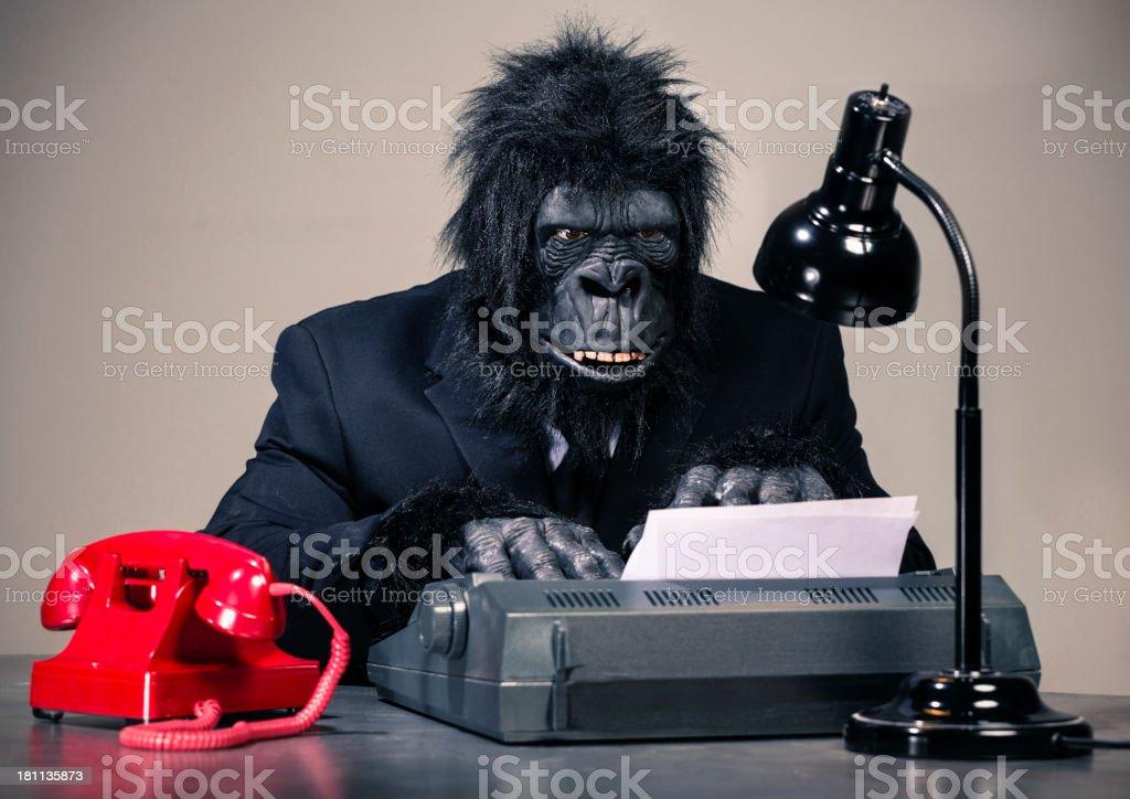 Gorilla Businessman stock photo