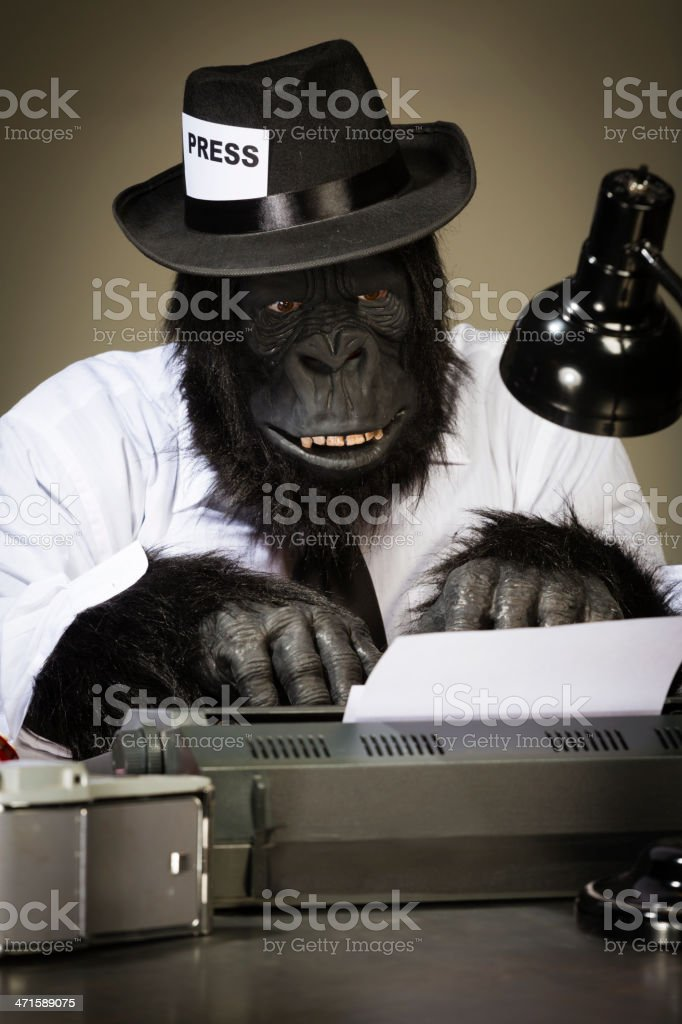 Gorilla Journalist royalty-free stock photo