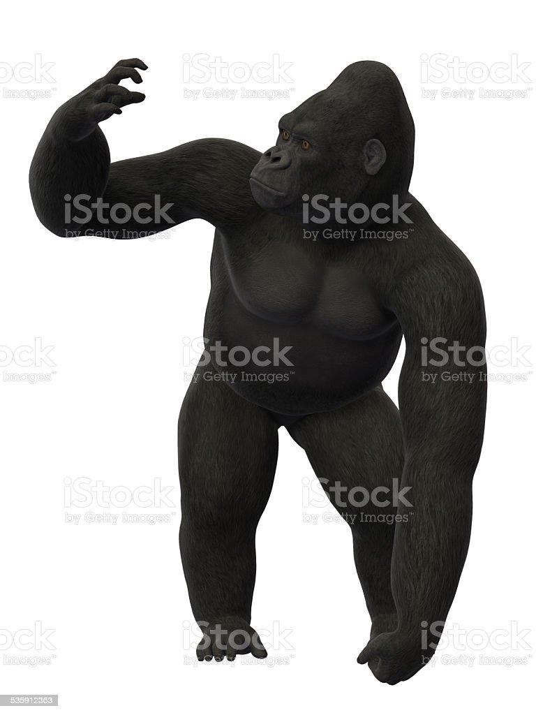 Gorilla standing stock photo