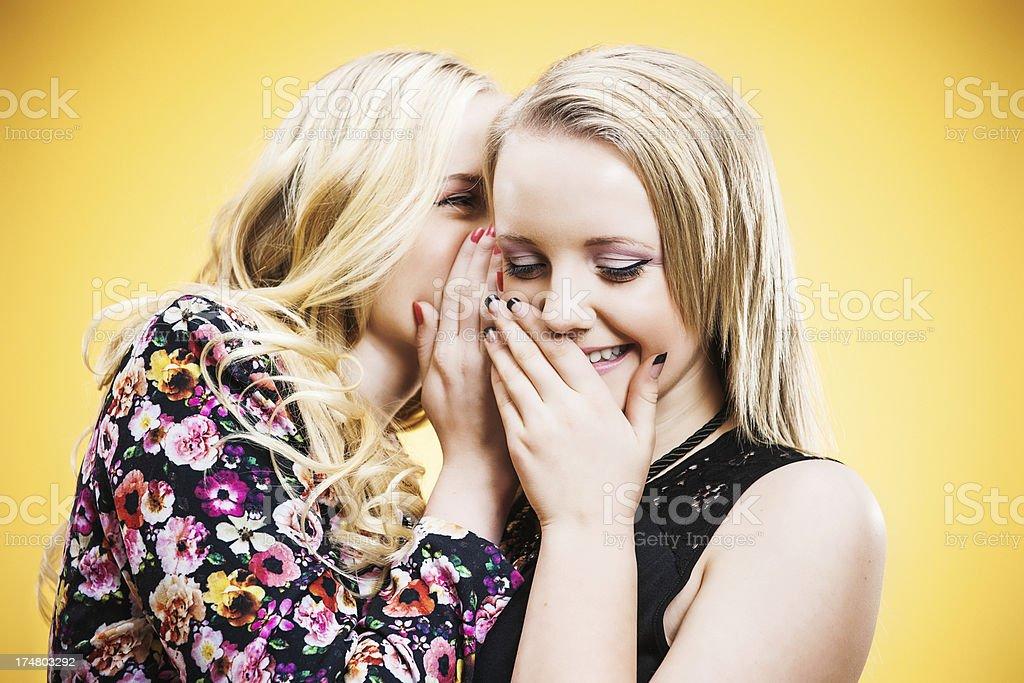 Gossiping teenage girls royalty-free stock photo
