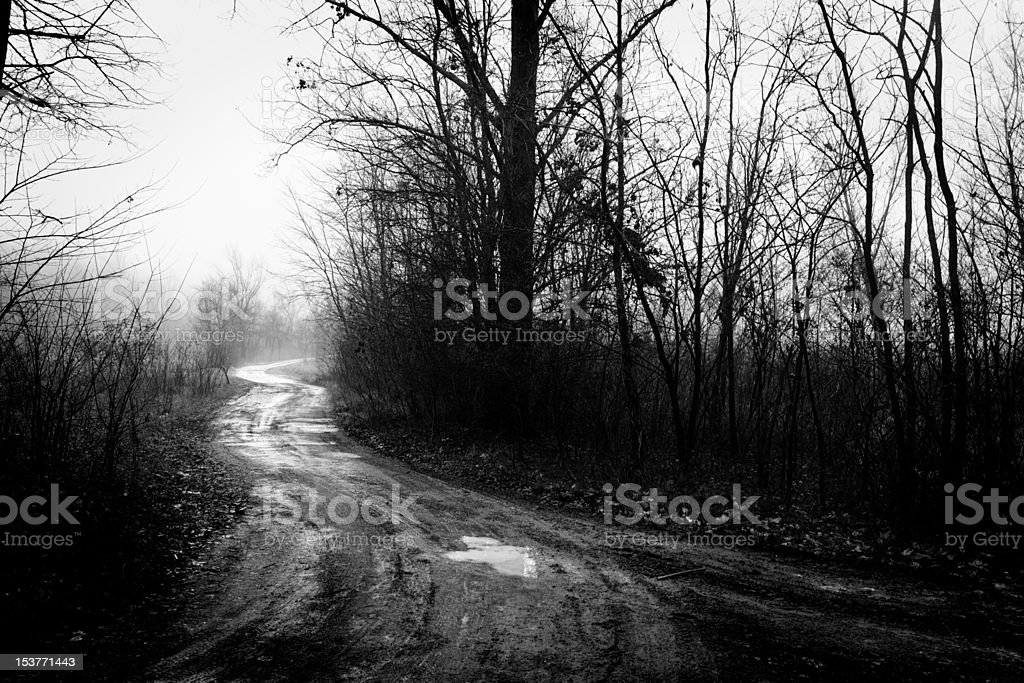 Gostly Scene in Country with Fog royalty-free stock photo