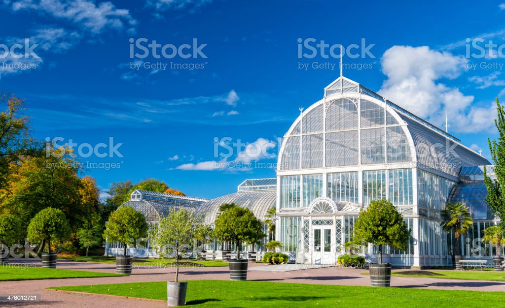 Gothenburg Palm house royalty-free stock photo