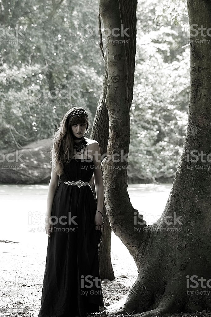 Gothic Queen stock photo