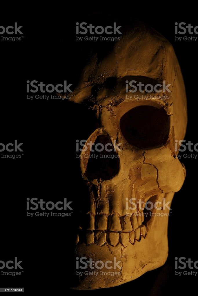 Gothic style skull stock photo