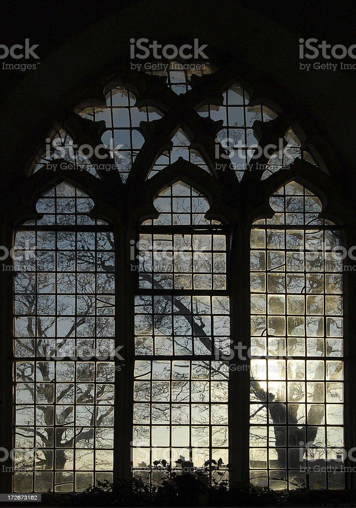 Gothic Window with Distant Trees stock photo
