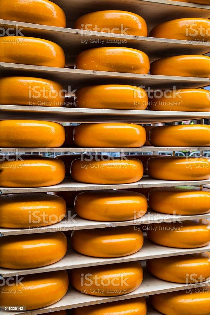 Gouda cheese in a row stock photo