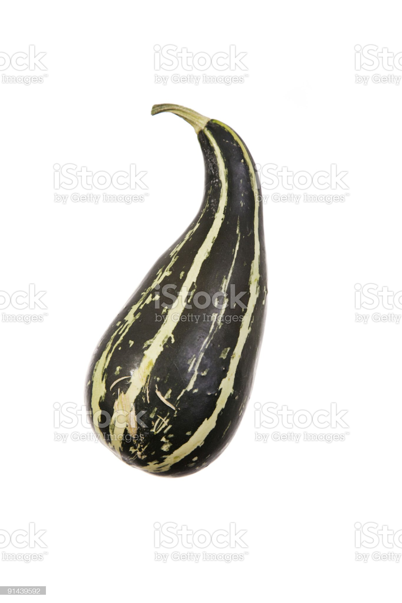 Gourd royalty-free stock photo