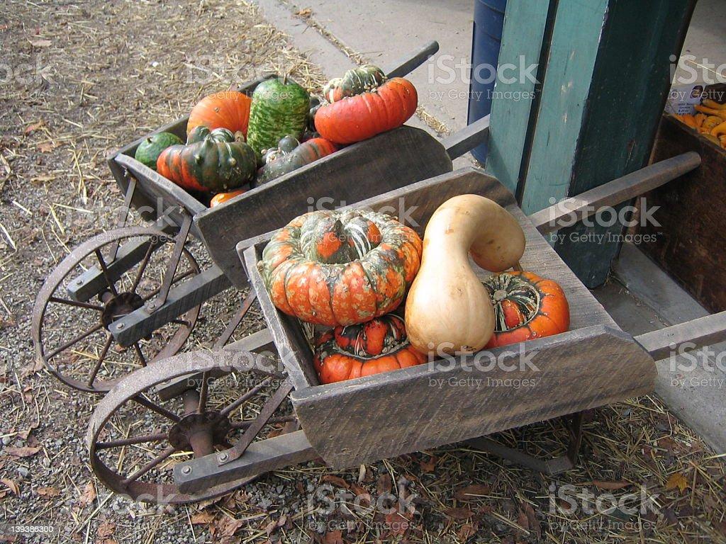 Gourds and Wheelbarrow royalty-free stock photo