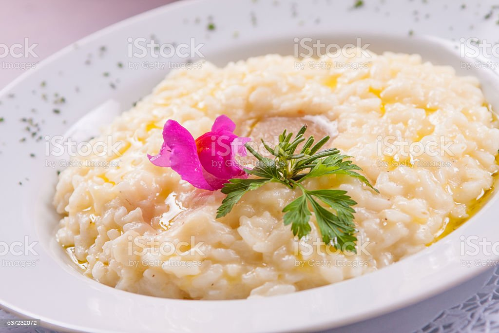 Gourmet Cheese Risotto stock photo