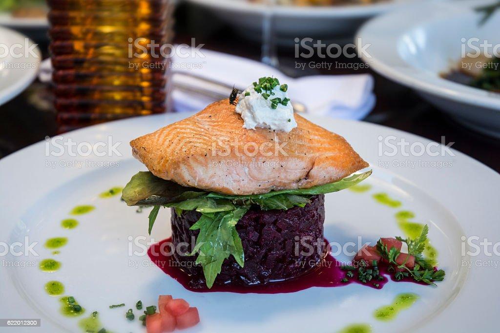 Gourmet Fine Dining Salmon Salad Macro stock photo