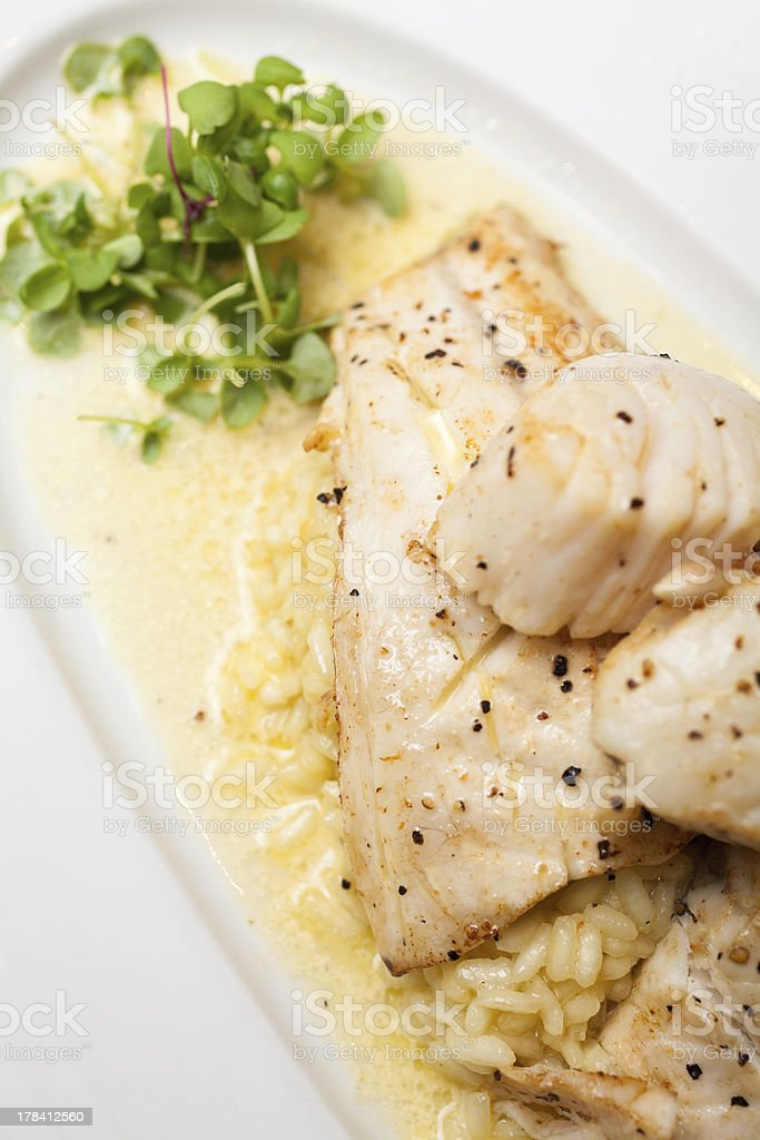 Gourmet Fish Food stock photo