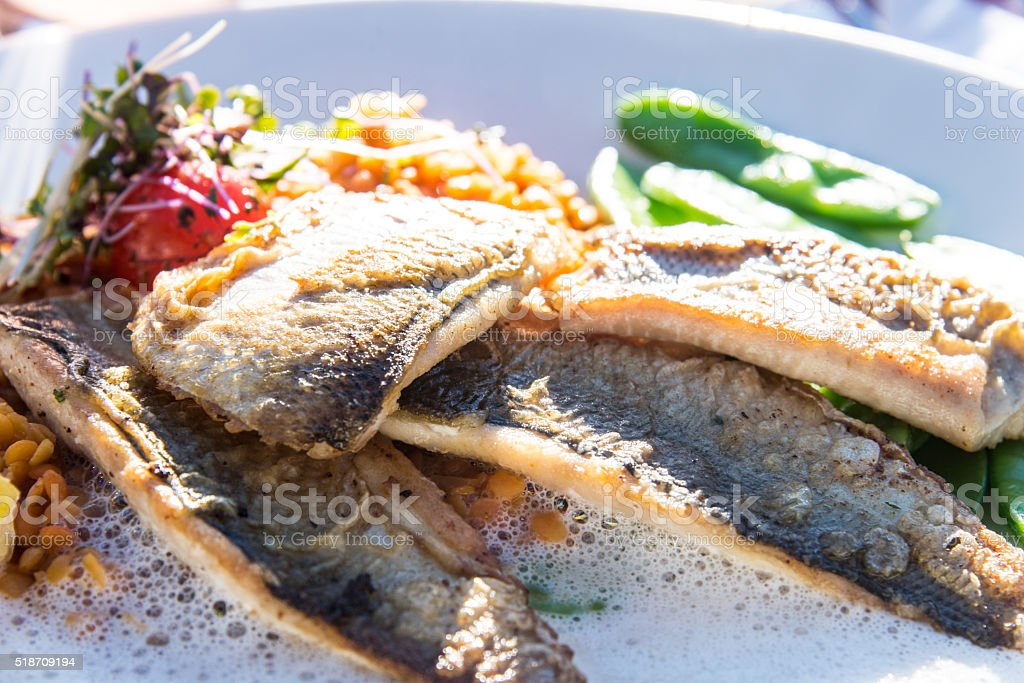 gourmet fish stock photo