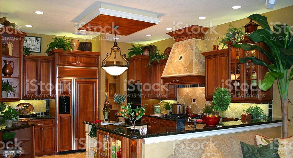 Gourmet Kitchen royalty-free stock photo