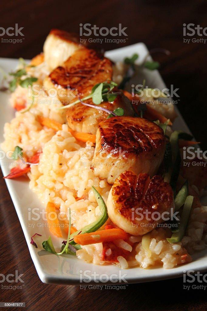 Gourmet scallops with rice - menu photo stock photo