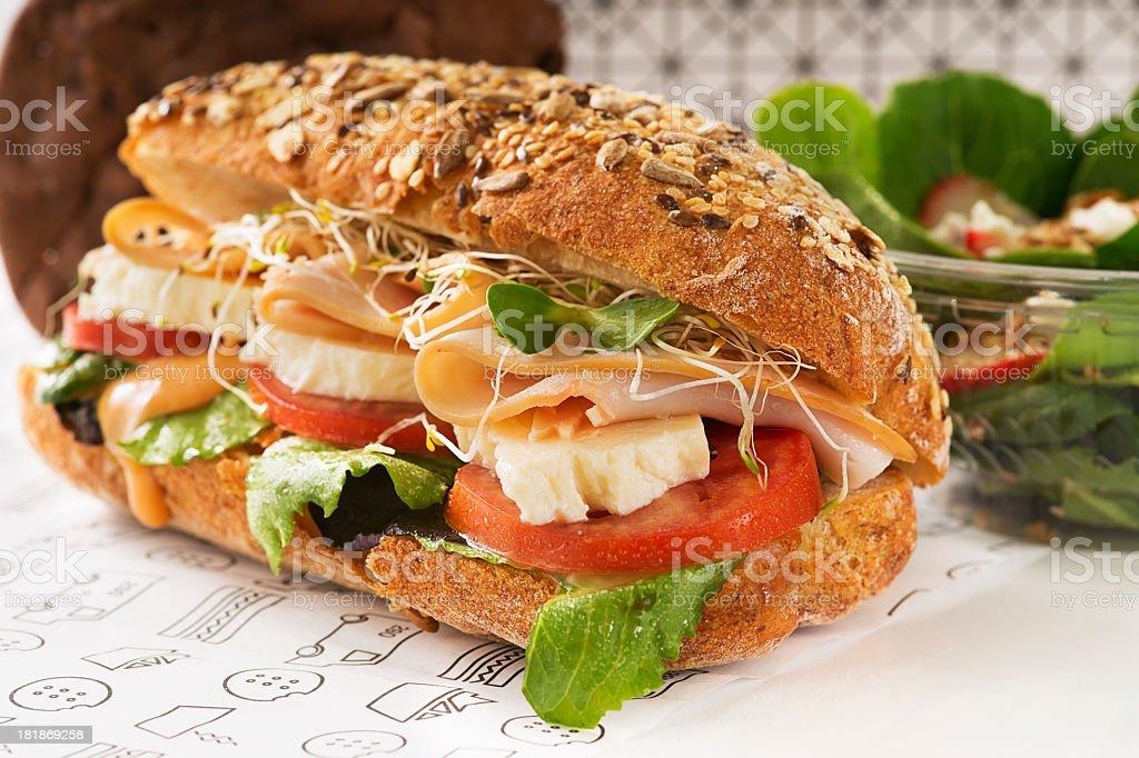 Gourmet Turkey Sandwich royalty-free stock photo