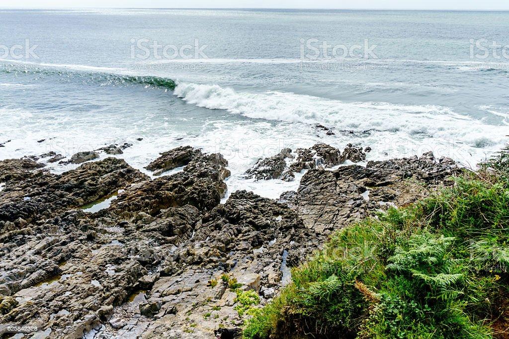 Gower coastline at Southgate stock photo