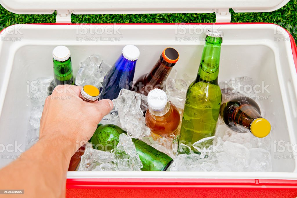 Grabbing Beer from a Cooler stock photo