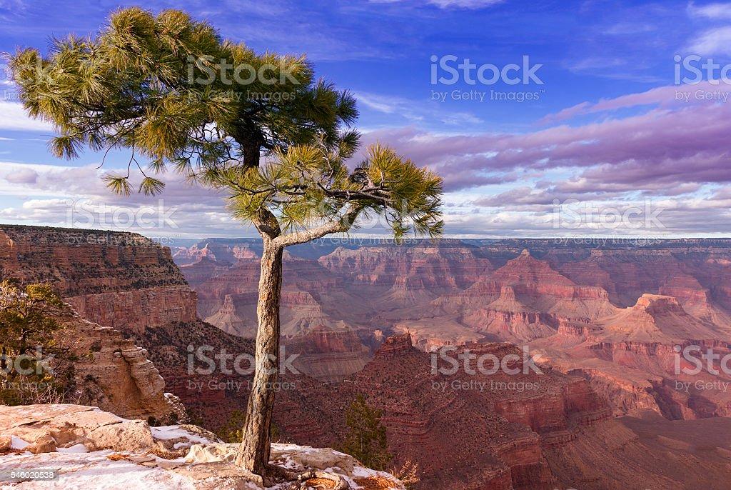 Grad Canyon stock photo