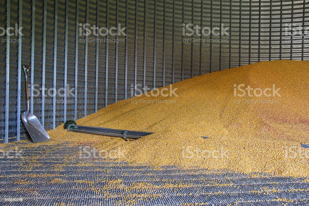 Grain Bin stock photo