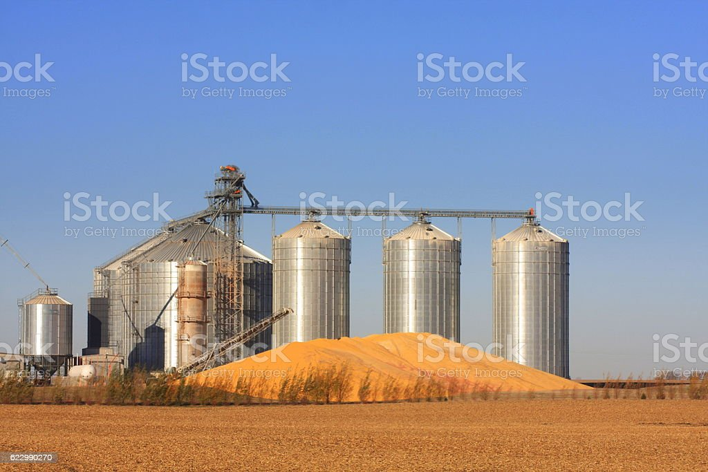 Grain Bins and Corn Pile in Iowa stock photo