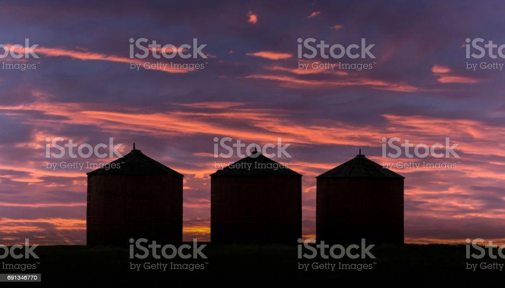 grain bins at sunset stock photo
