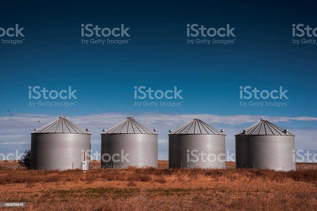Grain Bins on the Prairies stock photo