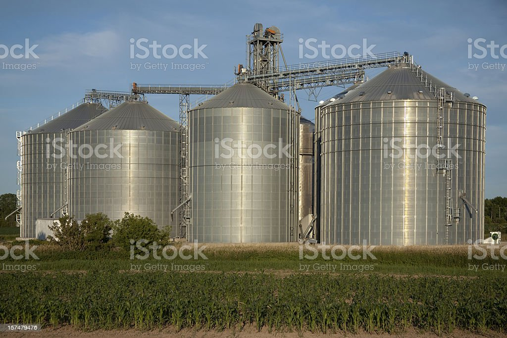 Grain Elevator and Agricultural Storage stock photo