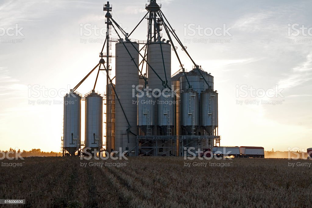 Grain Elevator transport stock photo