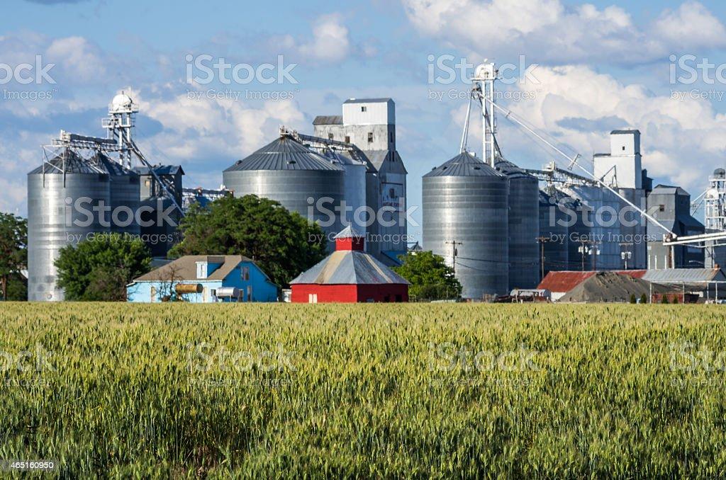 Grain elevators and silos with wheat stock photo