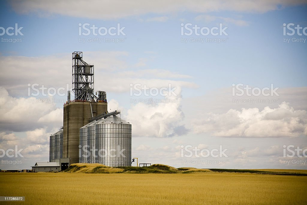 grain elevators stock photo