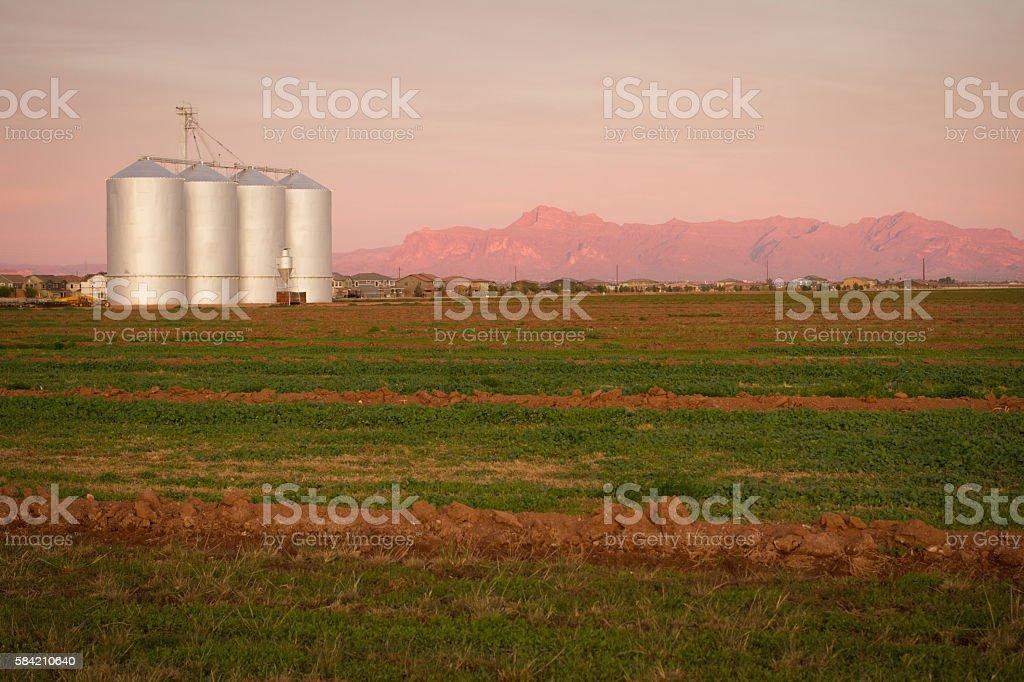 Grain Elevators with Mountains stock photo