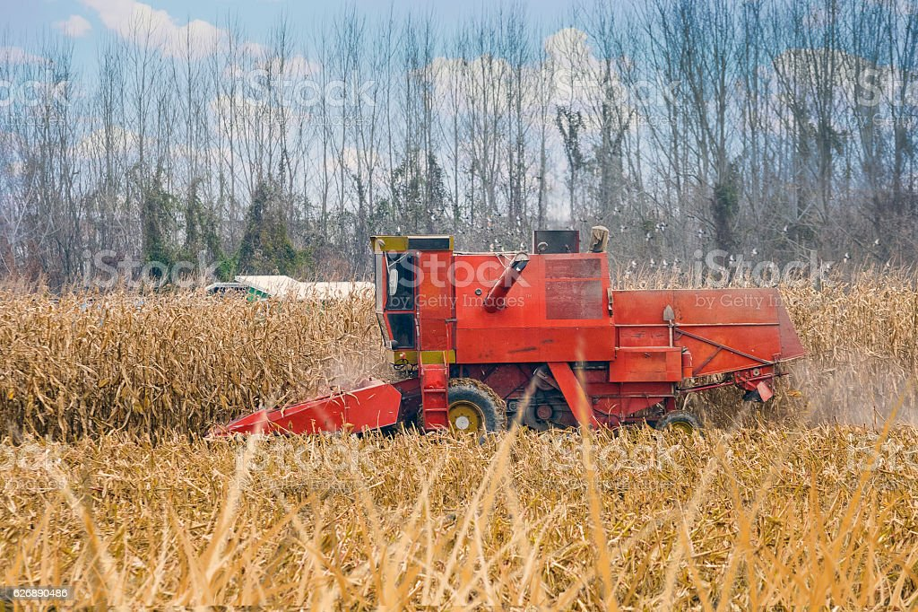 Grain harvesting combine stock photo