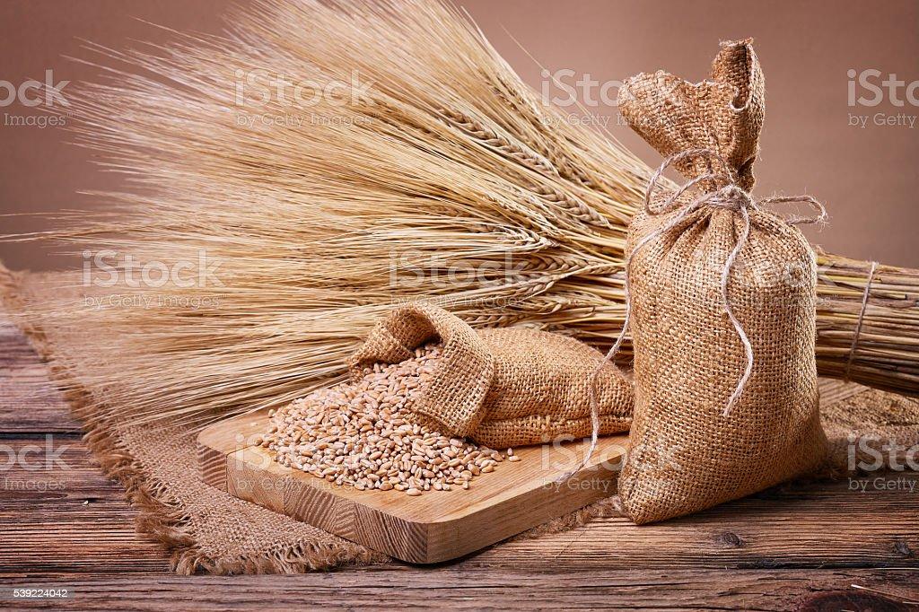 Grain in sacks and ears of wheat stock photo
