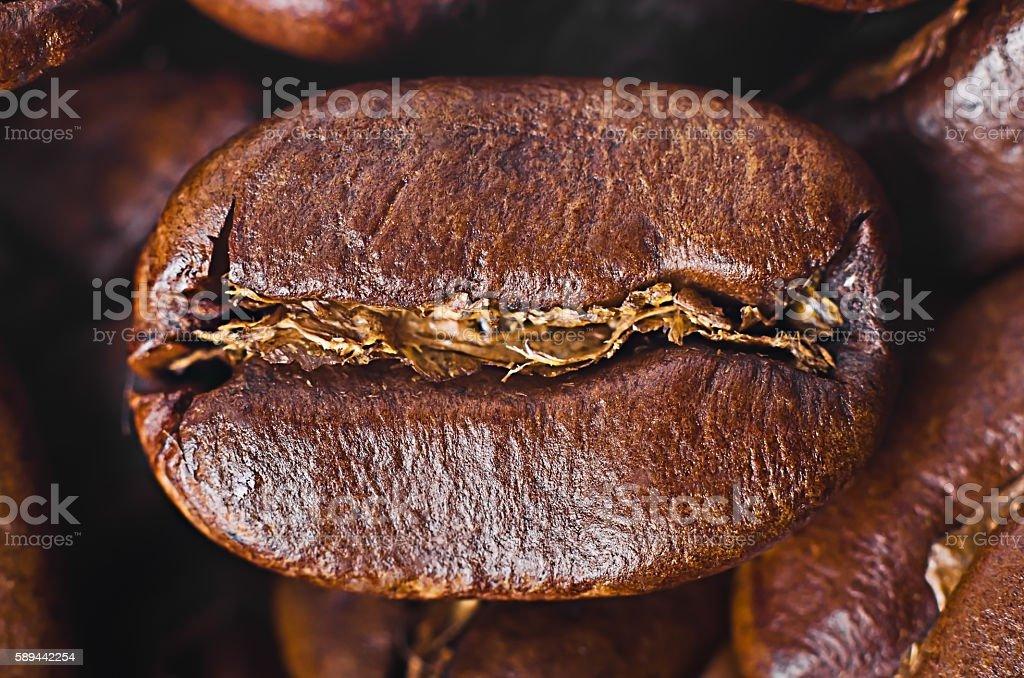 Grain of coffee close-up stock photo