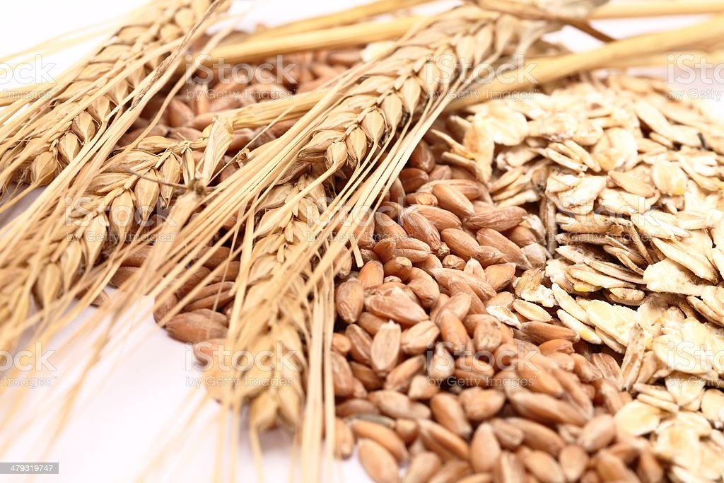Grain stock photo