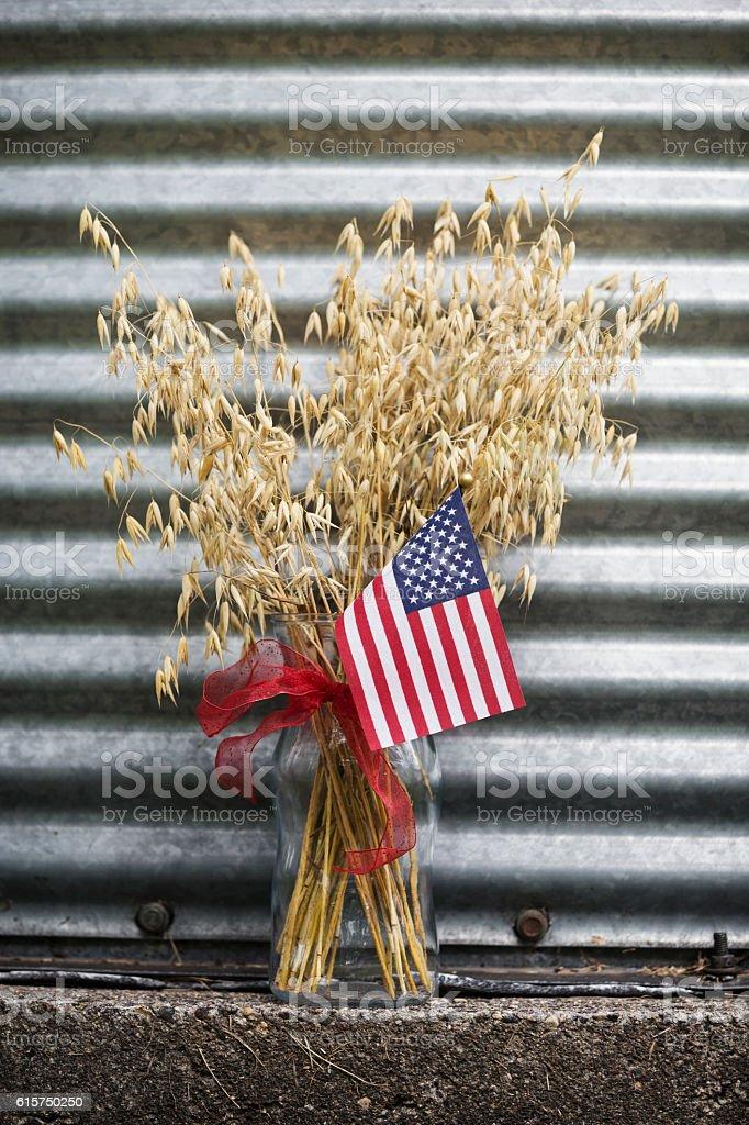 USA Grain stock photo