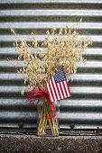 USA Grain