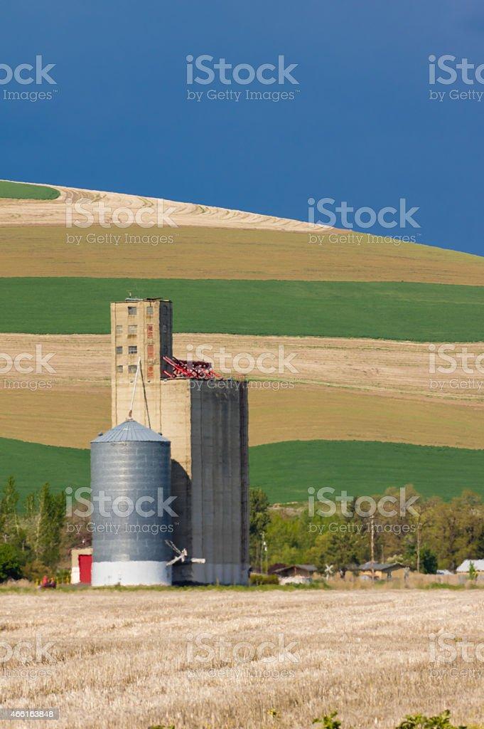Grain silo and elevator in field stock photo