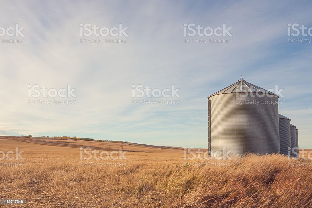 Grain Silo Autumn Landscape stock photo