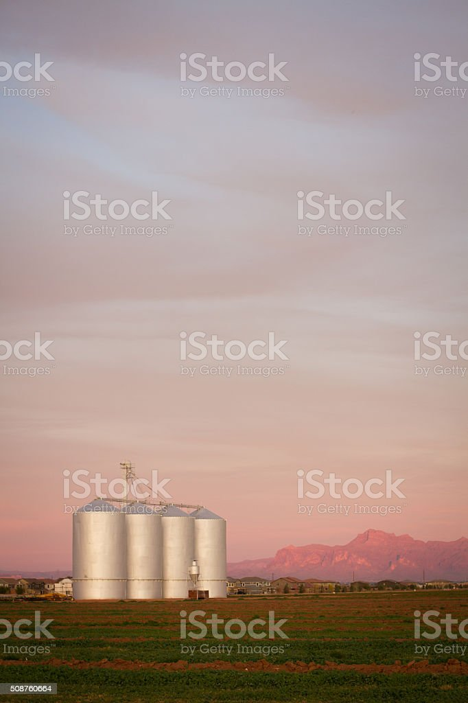 Grain Silos at Sunset stock photo