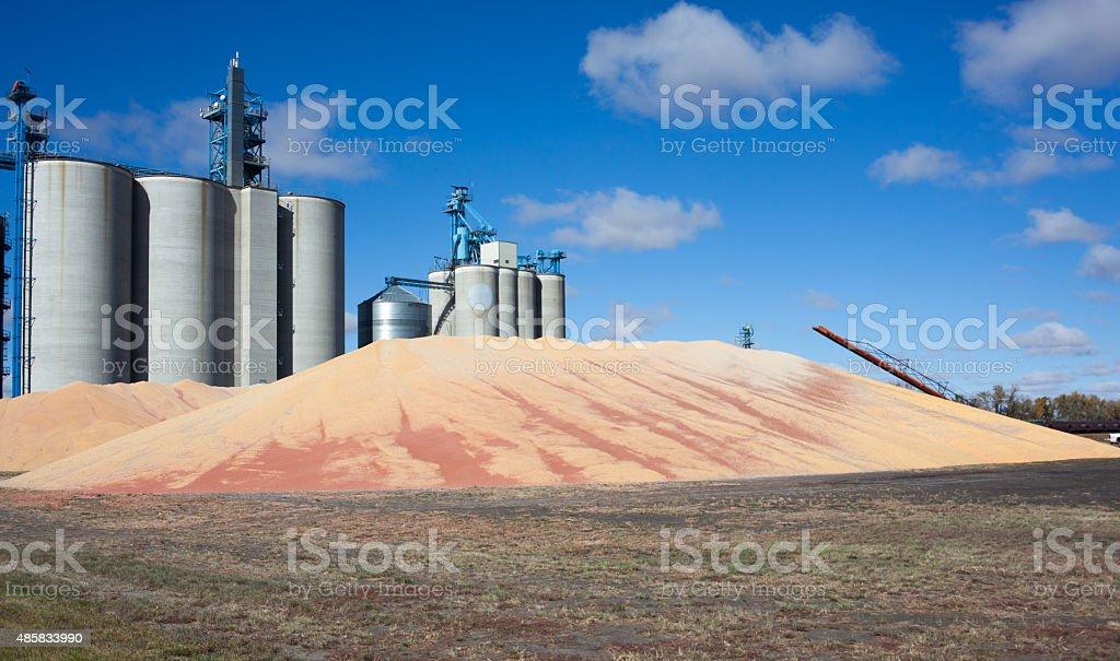 grain storage overflow stock photo