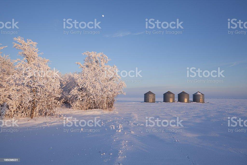 Grain Storage royalty-free stock photo