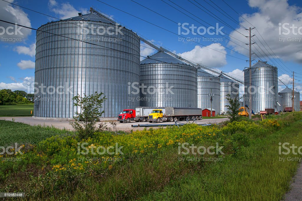 Grain storage stock photo
