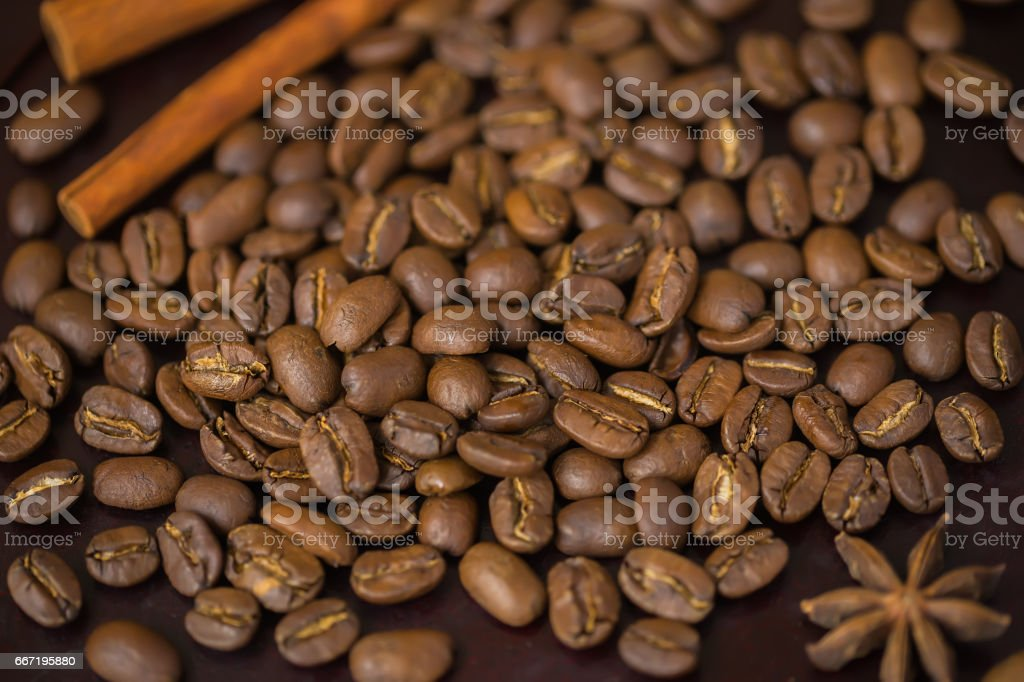Grains of coffee close-up. Texture of extra large arabica Maragogype bean of very high quality, considered one of the best beans in the world. Coffee break concept stock photo