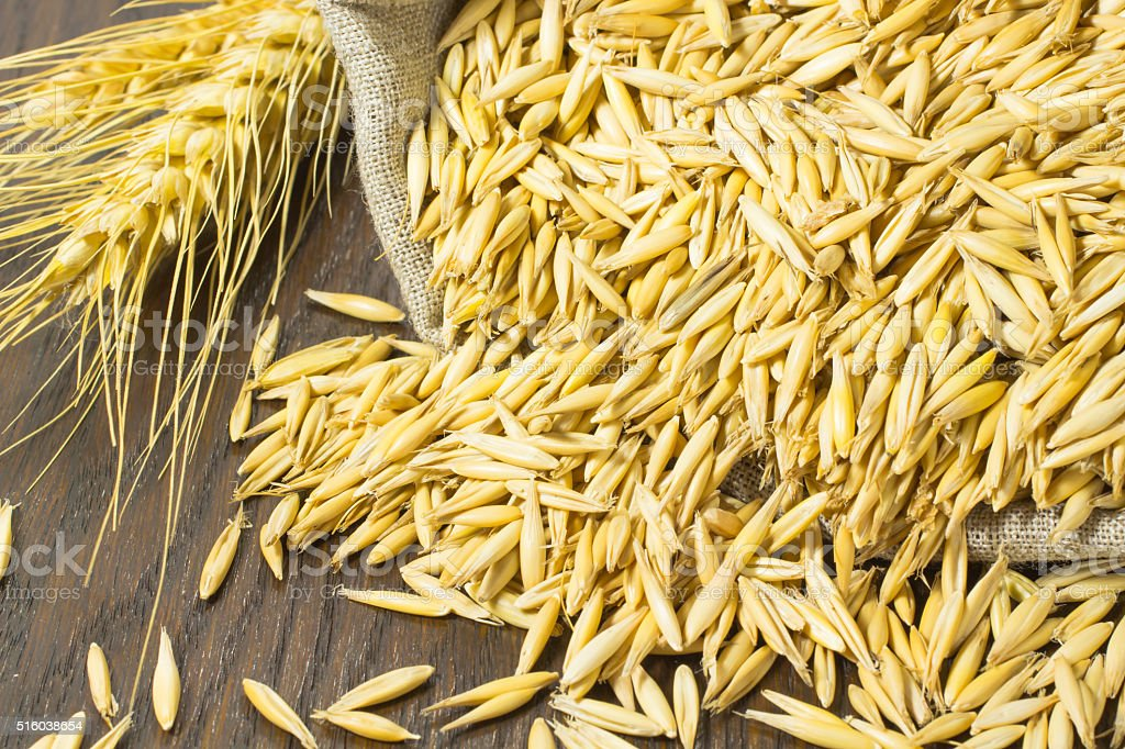 Grains of oats in the bag. Twig wheat stock photo
